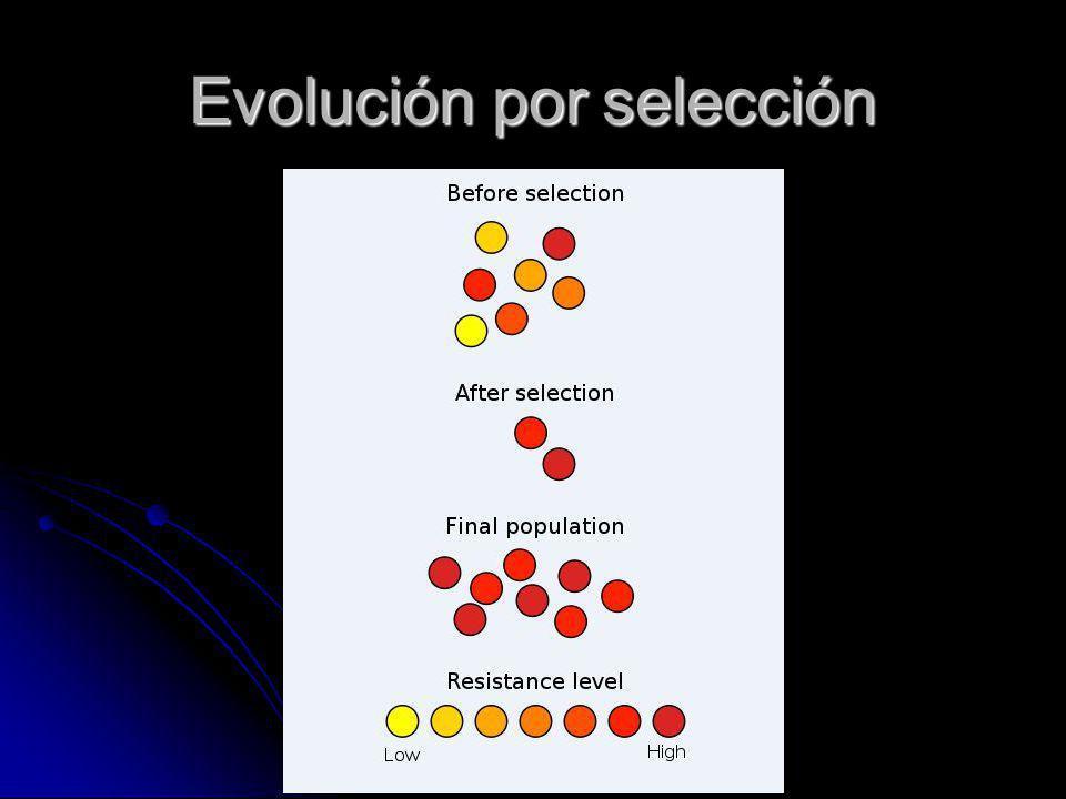 Evolución por selección