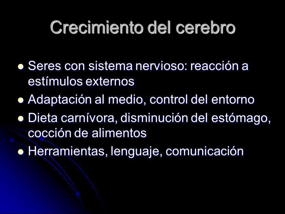 Crecimiento del cerebro Seres con sistema nervioso: reacción a estímulos externos Seres con sistema nervioso: reacción a estímulos externos Adaptación