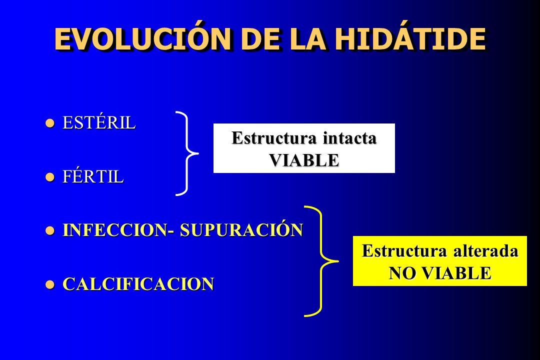 EVOLUCIÓN DE LA HIDÁTIDE ESTÉRIL ESTÉRIL FÉRTIL FÉRTIL INFECCION- SUPURACIÓN INFECCION- SUPURACIÓN CALCIFICACION CALCIFICACION Estructura intacta VIAB