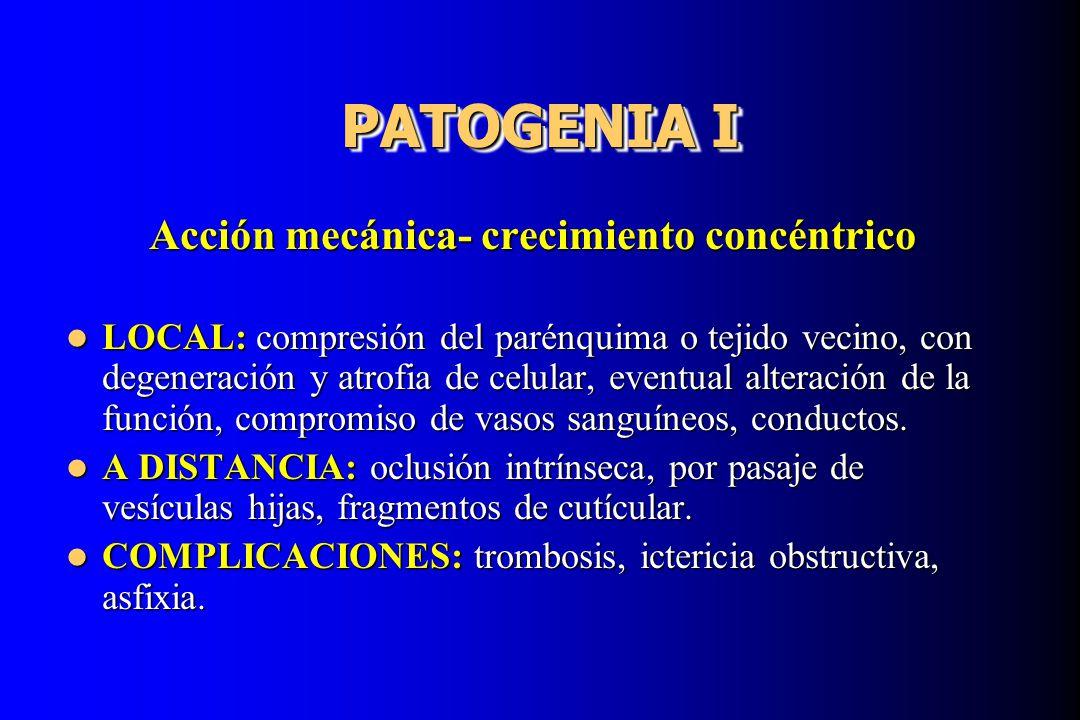 PATOGENIA I Acción mecánica- crecimiento concéntrico LOCAL: compresión del parénquima o tejido vecino, con degeneración y atrofia de celular, eventual
