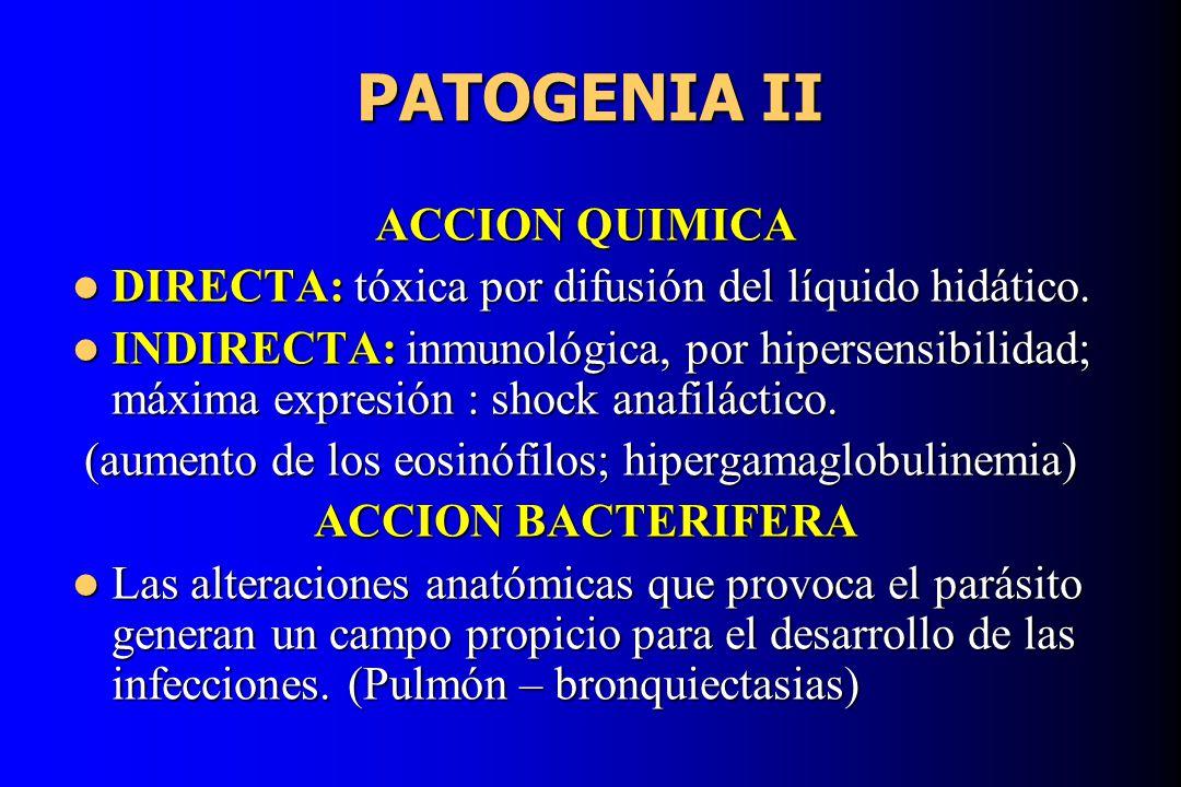 PATOGENIA II ACCION QUIMICA DIRECTA: tóxica por difusión del líquido hidático. DIRECTA: tóxica por difusión del líquido hidático. INDIRECTA: inmunológ