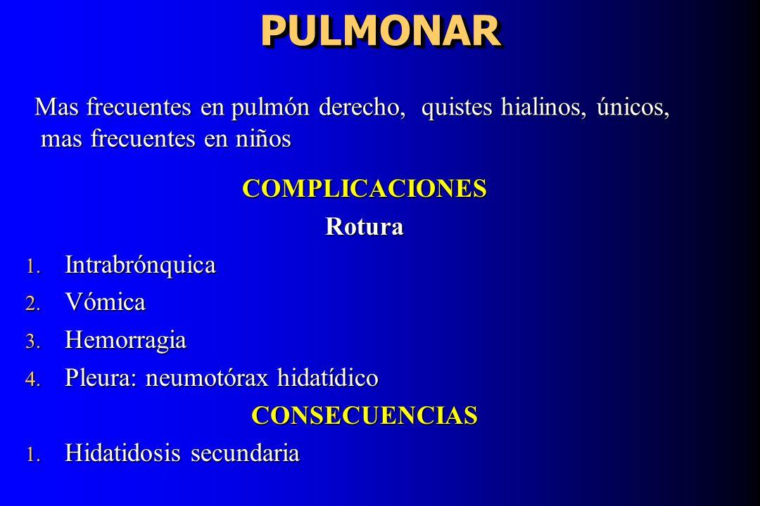 PULMONARPULMONAR COMPLICACIONESRotura 1. Intrabrónquica 2. Vómica 3. Hemorragia 4. Pleura: neumotórax hidatídico CONSECUENCIAS 1. Hidatidosis secundar