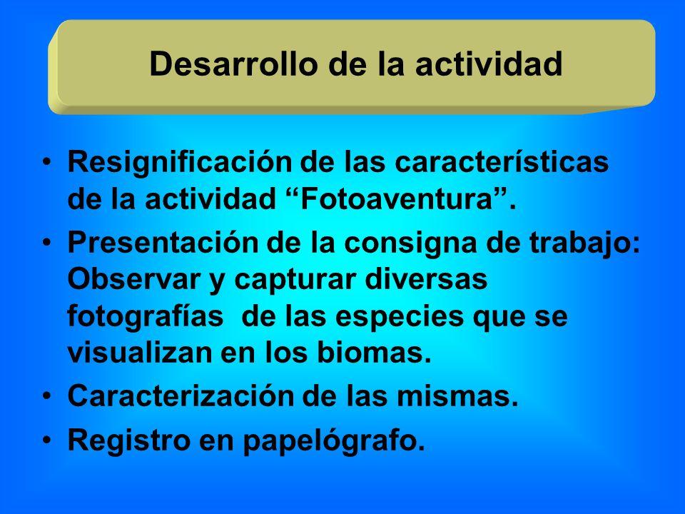 Resignificación de las características de la actividad Fotoaventura. Presentación de la consigna de trabajo: Observar y capturar diversas fotografías