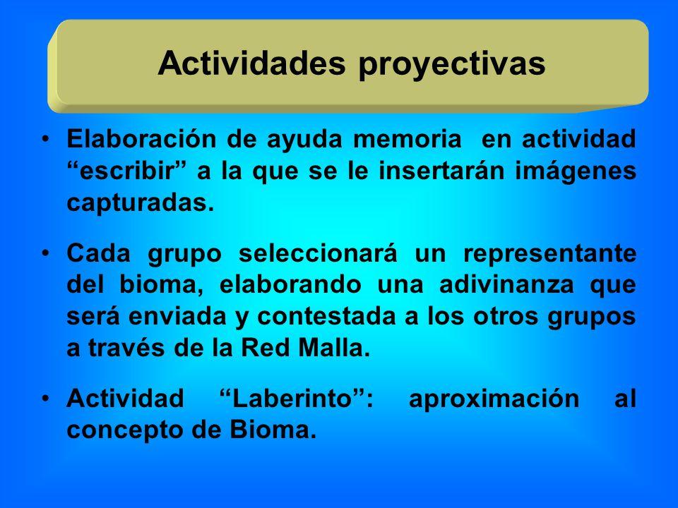 Elaboración de ayuda memoria en actividad escribir a la que se le insertarán imágenes capturadas. Cada grupo seleccionará un representante del bioma,
