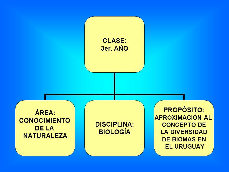 CLASE: 3er. AÑO ÁREA: CONOCIMIENTO DE LA NATURALEZA DISCIPLINA: BIOLOGÍA PROPÓSITO: APROXIMACIÓN AL CONCEPTO DE LA DIVERSIDAD DE BIOMAS EN EL URUGUAY