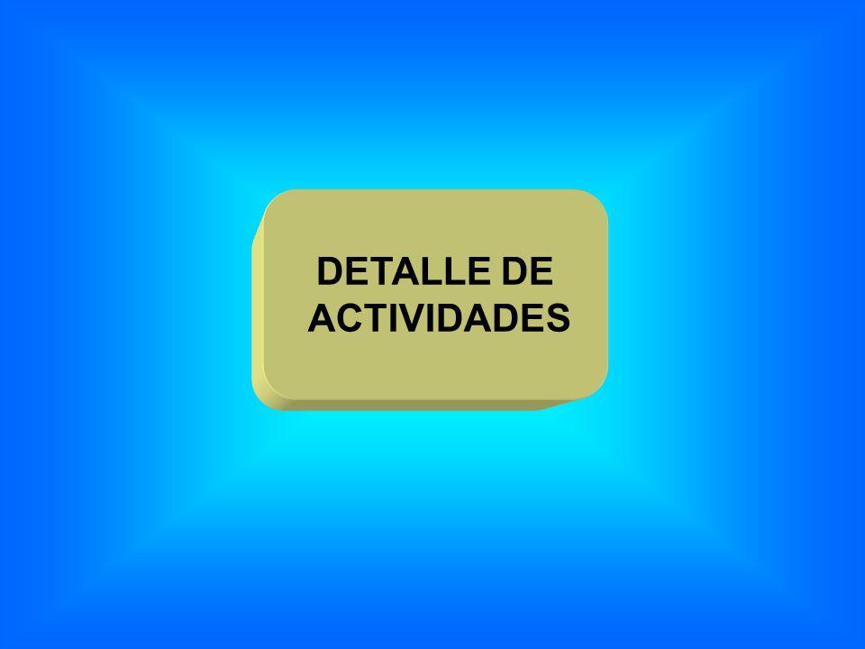 DETALLE DE ACTIVIDADES