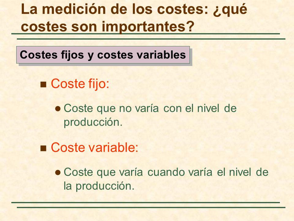 Coste fijo: Coste que no varía con el nivel de producción. Coste variable: Coste que varía cuando varía el nivel de la producción. La medición de los