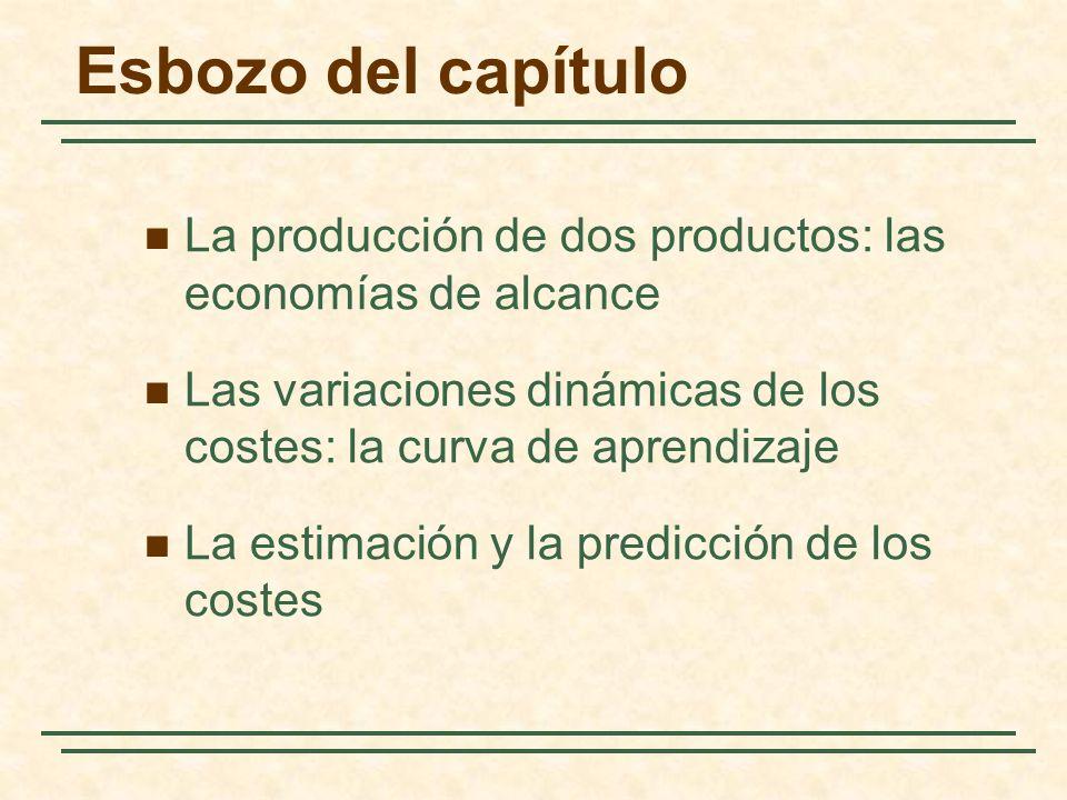 Esbozo del capítulo La producción de dos productos: las economías de alcance Las variaciones dinámicas de los costes: la curva de aprendizaje La estim