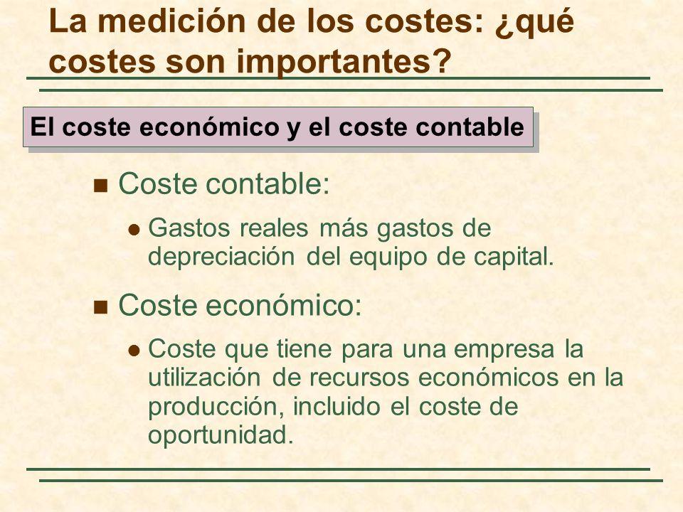 La medición de los costes: ¿qué costes son importantes? Coste contable: Gastos reales más gastos de depreciación del equipo de capital. Coste económic