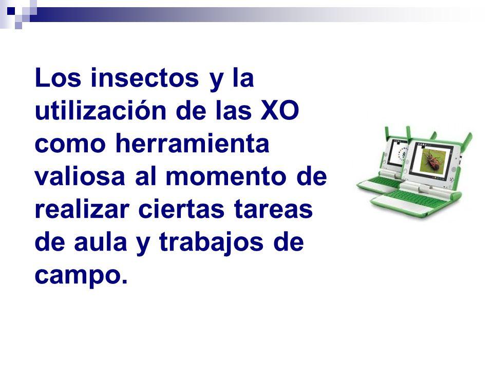 http://www.educa.madrid.org/web/ies.alpajes.aranjuez/argos/PREMIO4 /bio_aula/bocas.htm.
