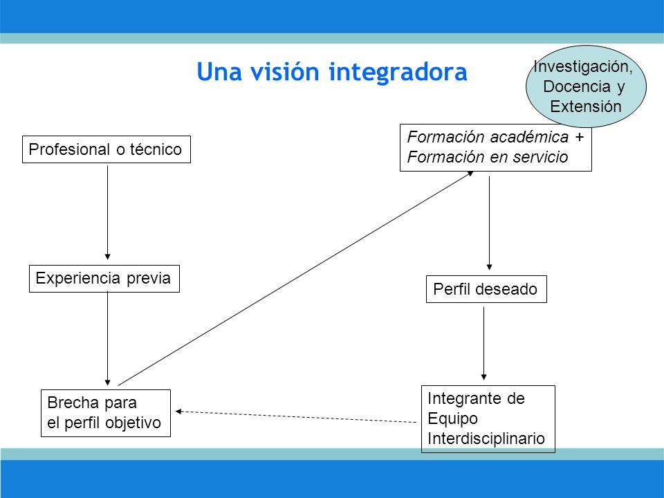 Una visión integradora Profesional o técnico Experiencia previa Brecha para el perfil objetivo Formación académica + Formación en servicio Perfil deseado Integrante de Equipo Interdisciplinario Investigación, Docencia y Extensión