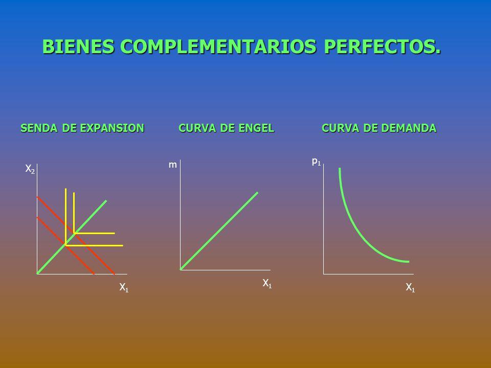 BIENES SUSTITUTOS PERFECTOS (III). La Curva de demanda. p X1X1 P 1 > (RMS)p 2 P 1 = (RMS)p 2 P 1 < (RMS)p 2 m/p 1