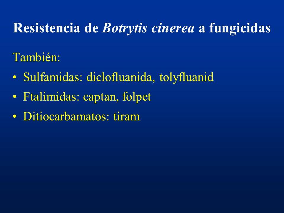Resistencia de Botrytis cinerea a fungicidas Bencimidazoles, dietofencarb Dicarboximidas: iprodione Anilopirimidinas: cyprodinil, pyrimetanil, mepanip