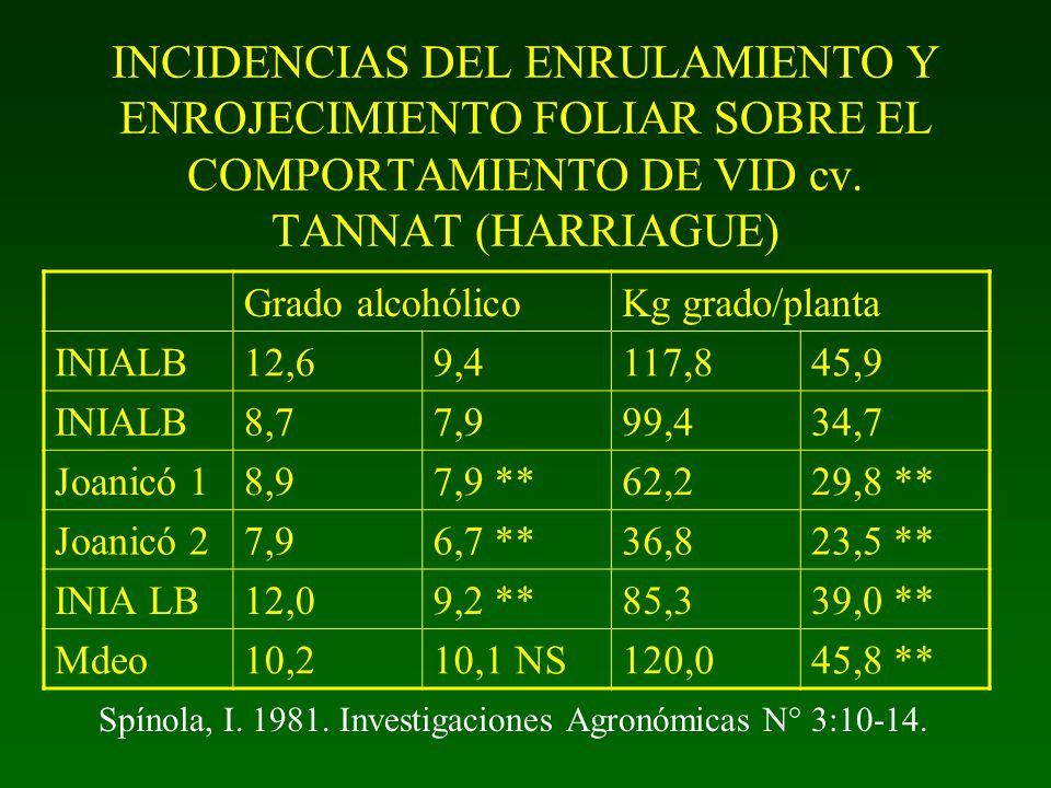 INCIDENCIAS DEL ENRULAMIENTO Y ENROJECIMIENTO FOLIAR SOBRE EL COMPORTAMIENTO DE VID cv. TANNAT (HARRIAGUE) Rendimiento/ planta Peso racimo (g) normale