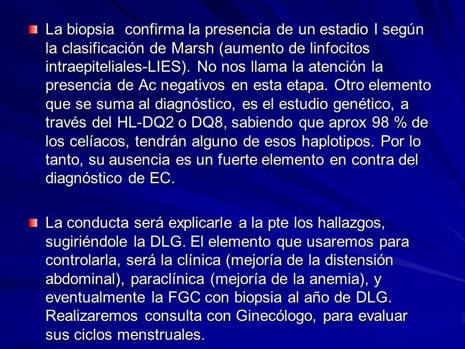 La biopsia confirma la presencia de un estadio I según la clasificación de Marsh (aumento de linfocitos intraepiteliales-LIES). No nos llama la atenci