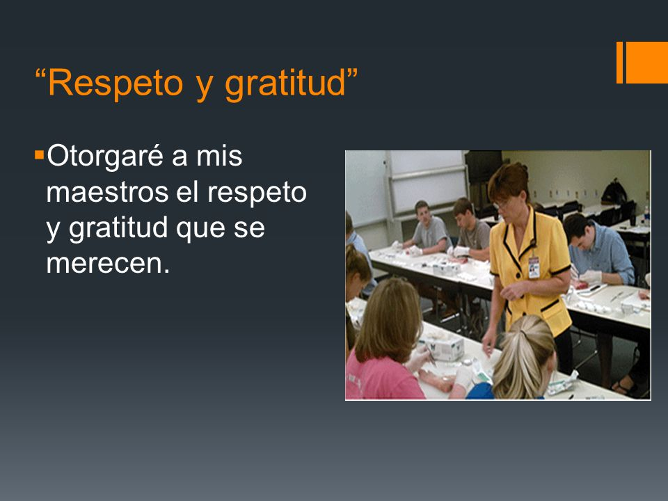 Respeto y gratitud Otorgaré a mis maestros el respeto y gratitud que se merecen.