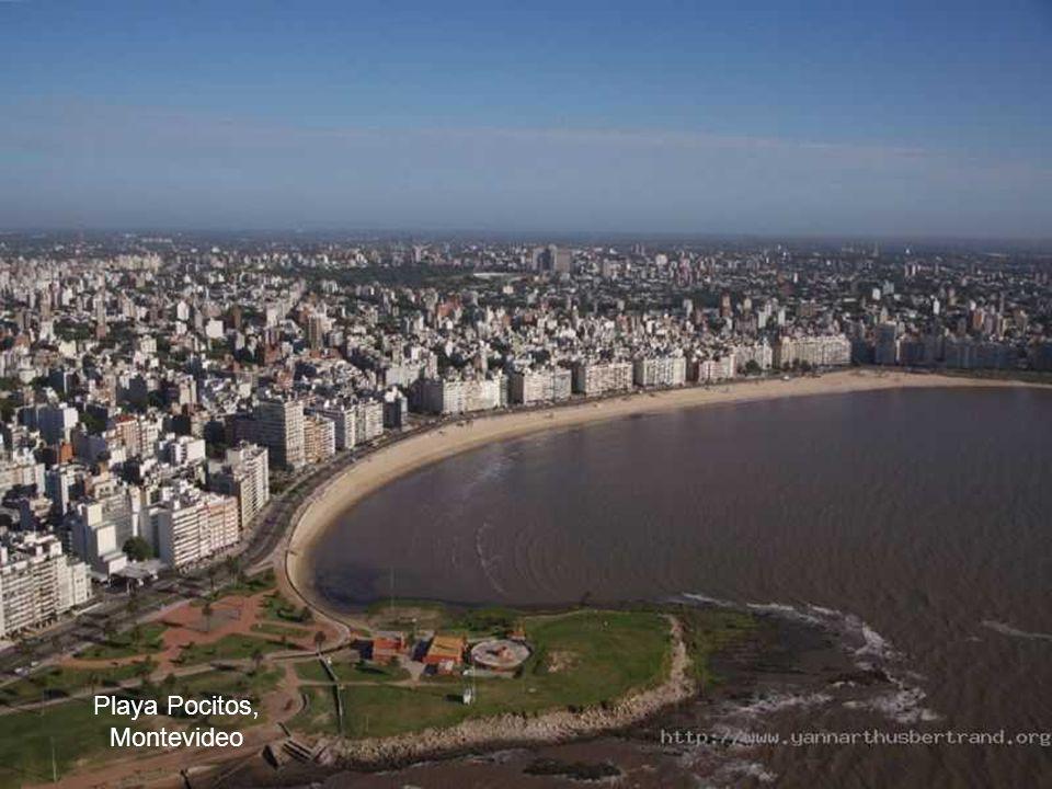Playa Pocitos, Montevideo