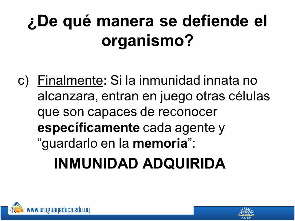 ¿De qué manera se defiende el organismo? c)Finalmente: Si la inmunidad innata no alcanzara, entran en juego otras células que son capaces de reconocer