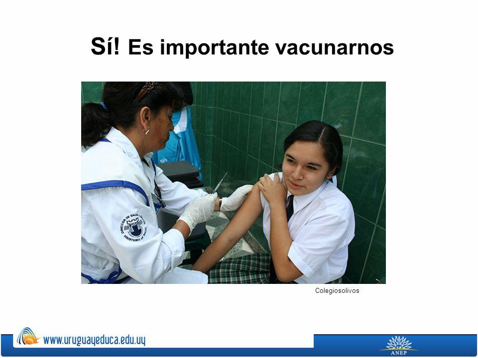 Sí! Es importante vacunarnos Colegiosolivos