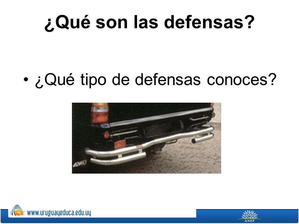 ¿Qué son las defensas? ¿Qué tipo de defensas conoces?
