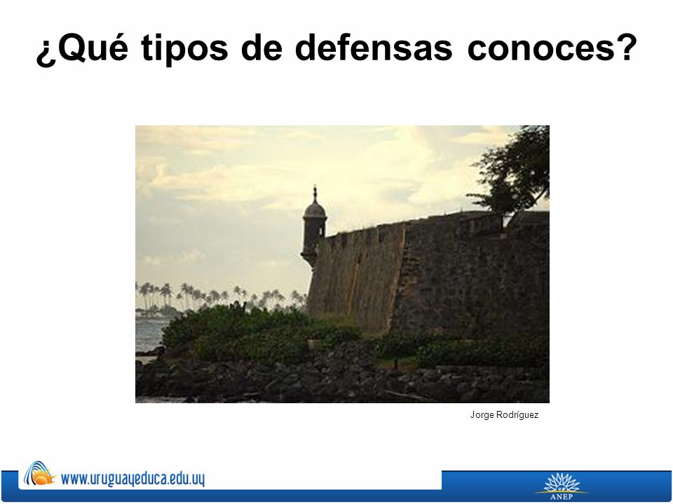 ¿Qué tipos de defensas conoces? Jorge Rodríguez