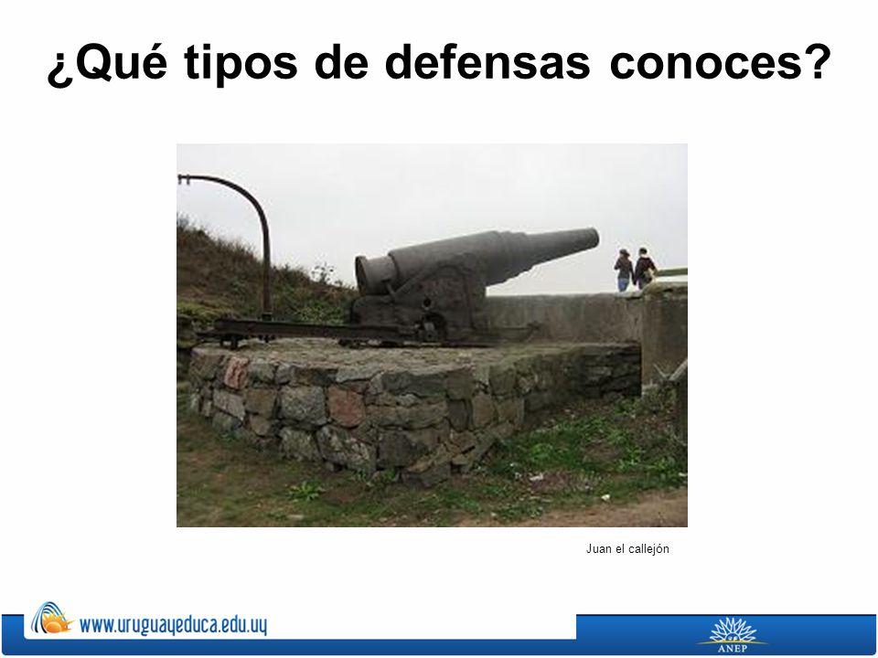 ¿Qué tipos de defensas conoces? Juan el callejón