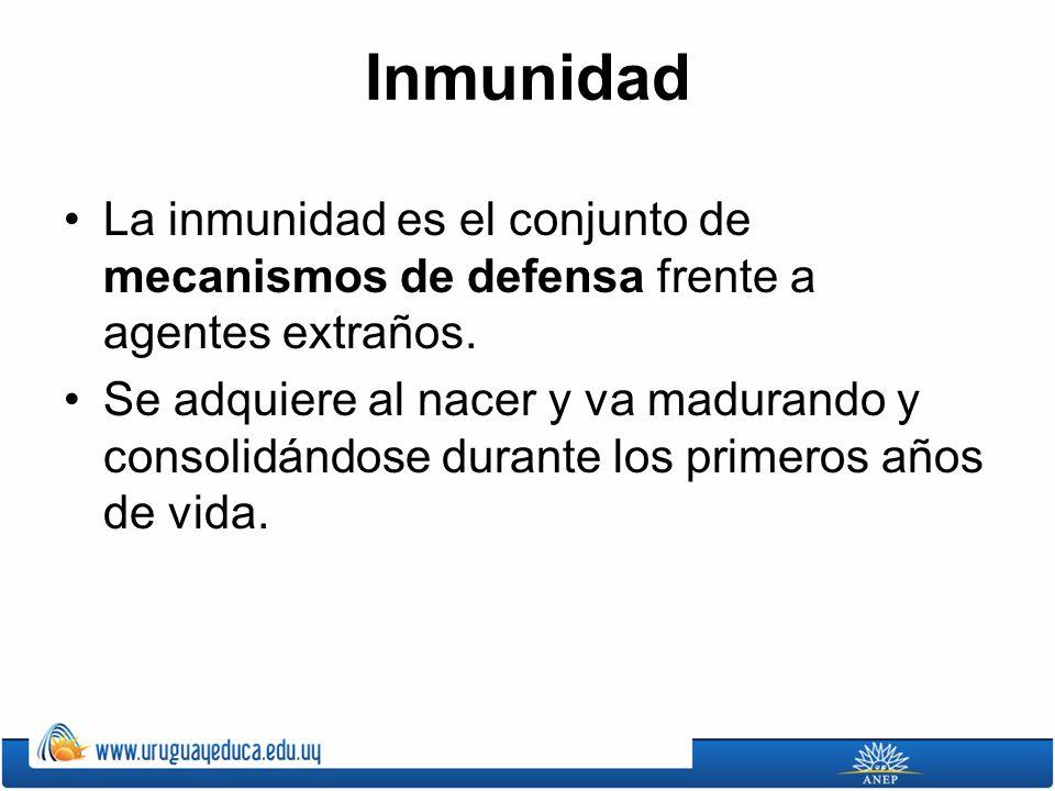 Inmunidad La inmunidad es el conjunto de mecanismos de defensa frente a agentes extraños. Se adquiere al nacer y va madurando y consolidándose durante