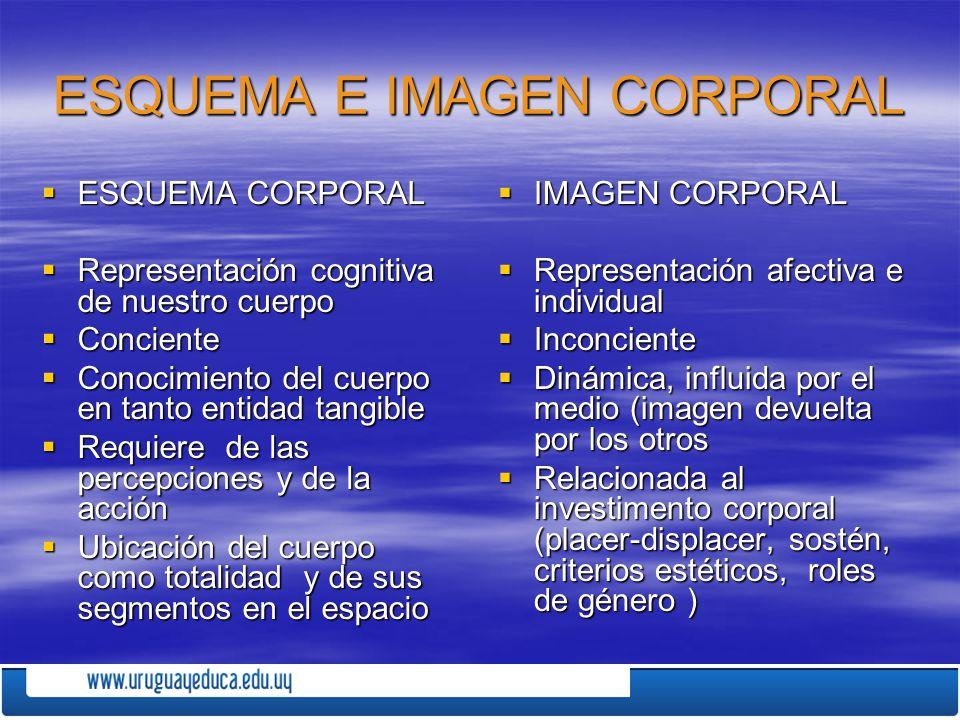 ESQUEMA E IMAGEN CORPORAL ESQUEMA CORPORAL ESQUEMA CORPORAL Representación cognitiva de nuestro cuerpo Representación cognitiva de nuestro cuerpo Conc