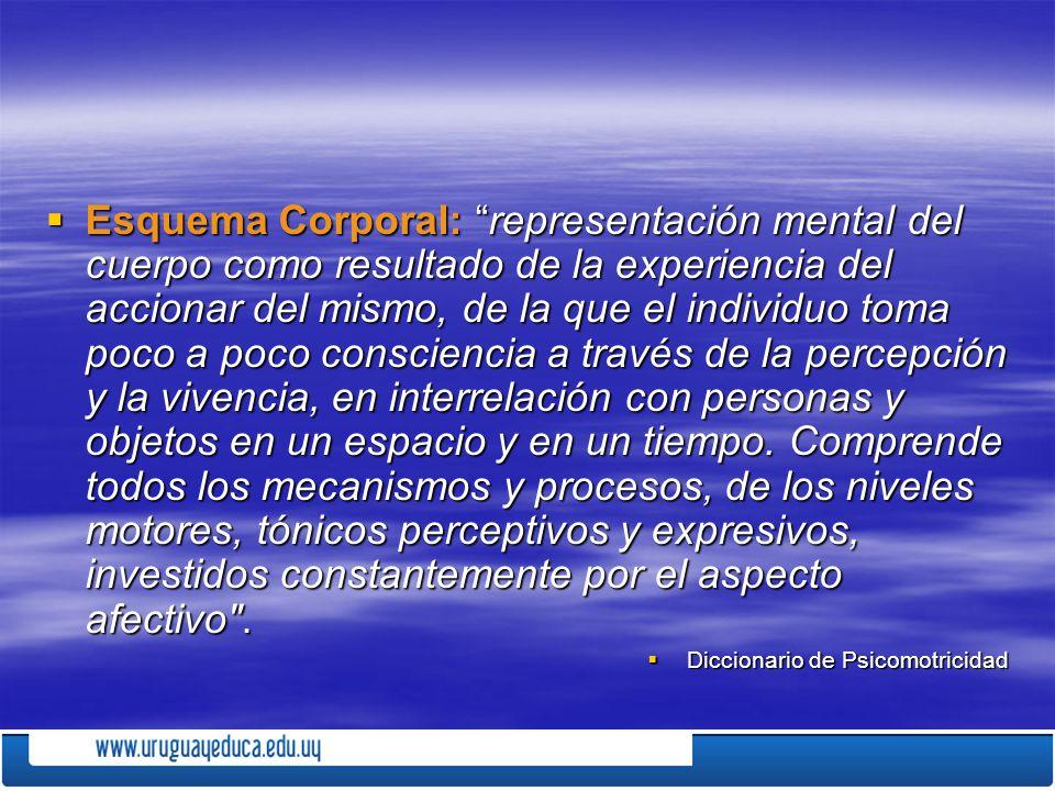 Esquema Corporal: representación mental del cuerpo como resultado de la experiencia del accionar del mismo, de la que el individuo toma poco a poco co