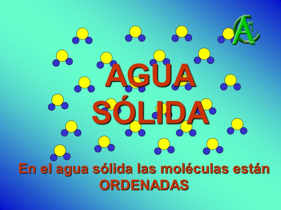 AGUA SÓLIDA En el agua sólida las moléculas están ORDENADAS