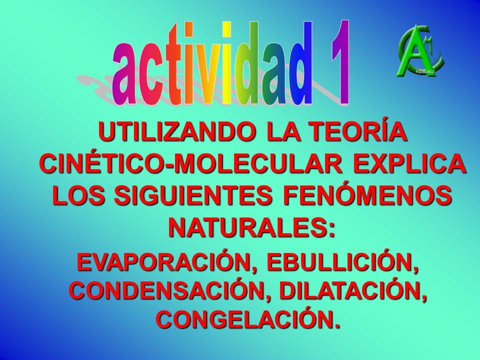 UTILIZANDO LA TEORÍA CINÉTICO-MOLECULAR EXPLICA LOS SIGUIENTES FENÓMENOS NATURALES: EVAPORACIÓN, EBULLICIÓN, CONDENSACIÓN, DILATACIÓN, CONGELACIÓN.