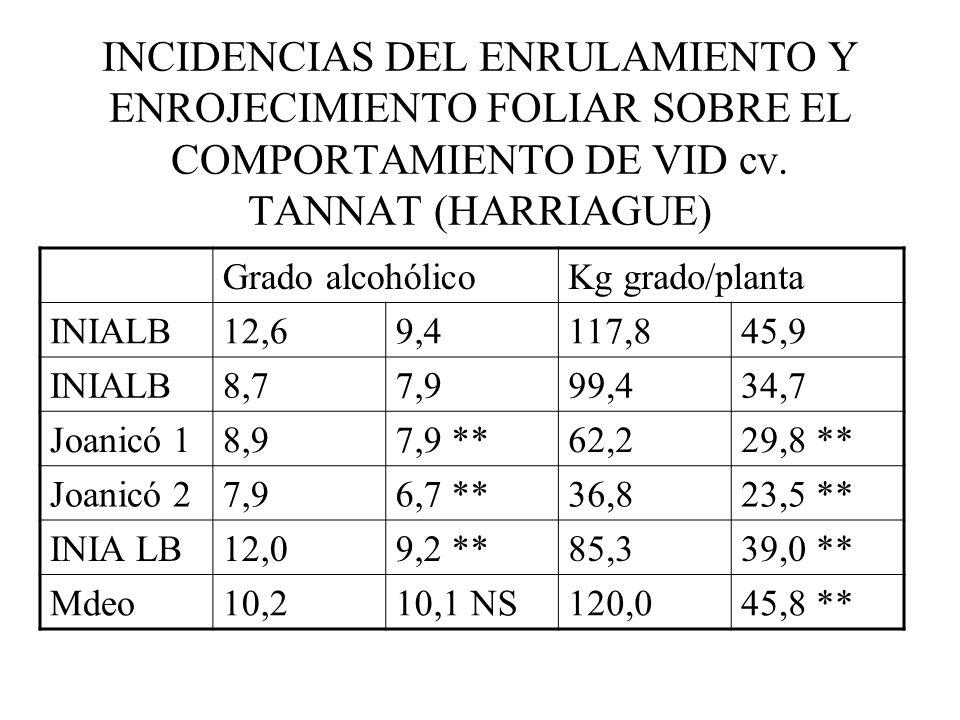 INCIDENCIAS DEL ENRULAMIENTO Y ENROJECIMIENTO FOLIAR SOBRE EL COMPORTAMIENTO DE VID cv.