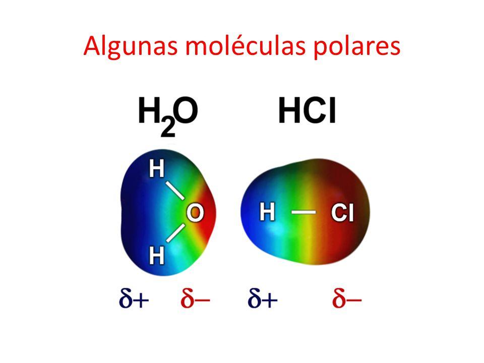 Algunas moléculas polares