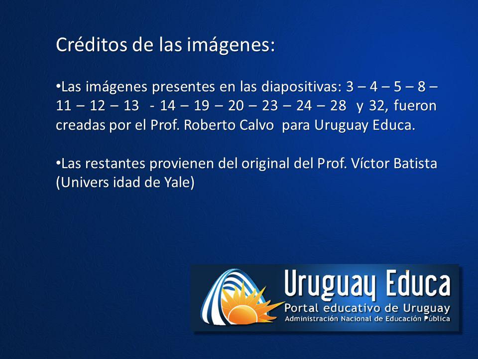 Créditos de las imágenes: Las imágenes presentes en las diapositivas: 3 – 4 – 5 – 8 – 11 – 12 – 13 - 14 – 19 – 20 – 23 – 24 – 28 y 32, fueron creadas