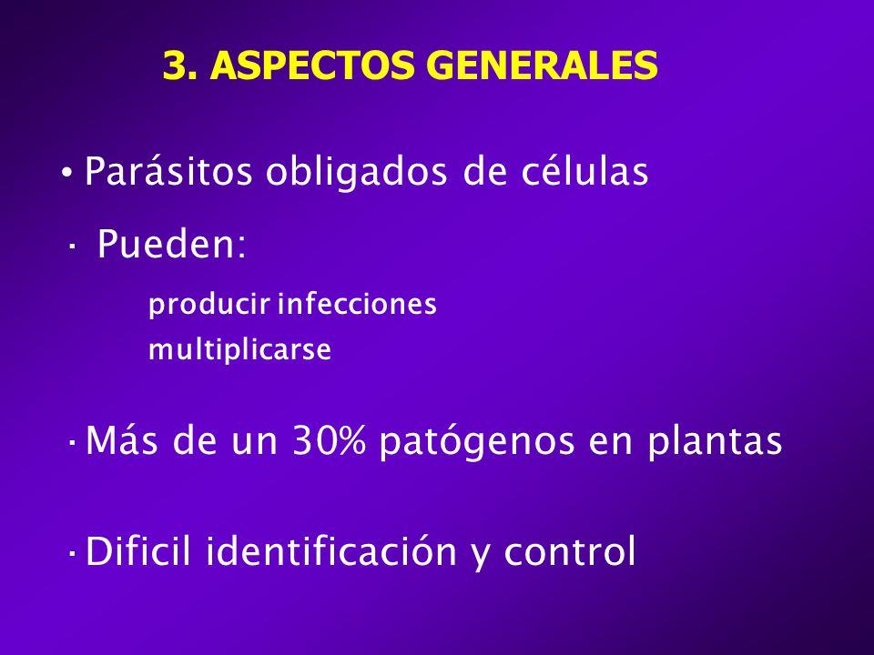 3. ASPECTOS GENERALES Parásitos obligados de células · Pueden: producir infecciones multiplicarse ·Más de un 30% patógenos en plantas ·Dificil identif