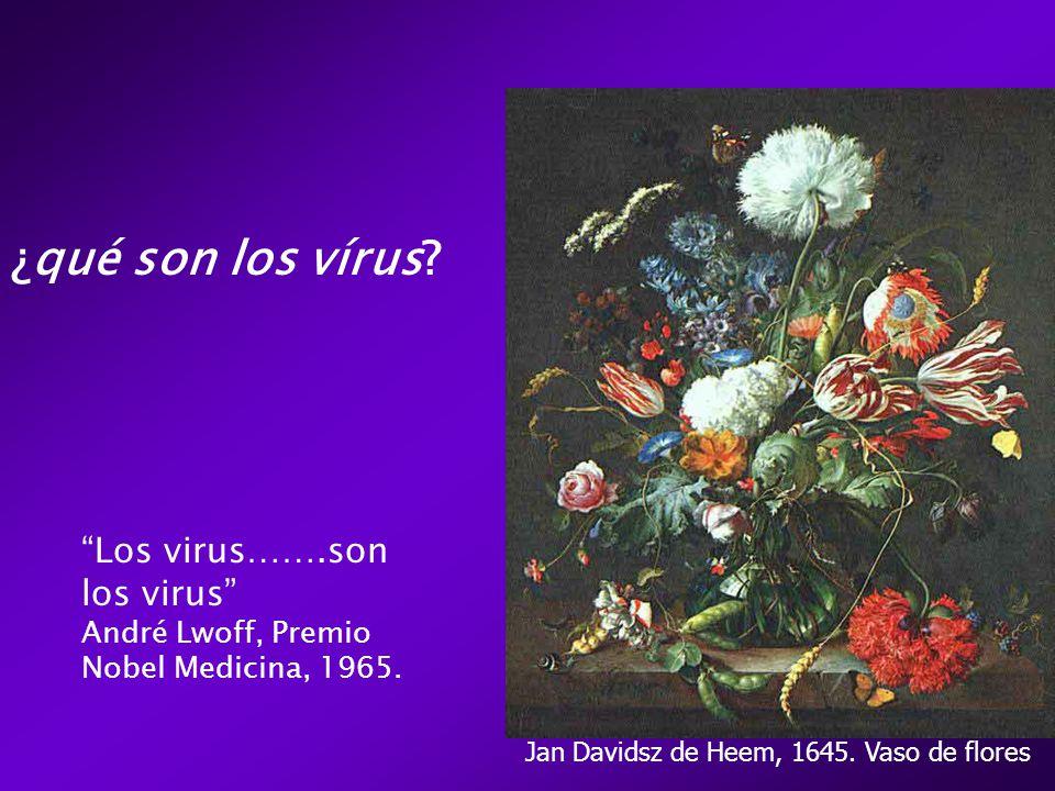¿qué son los vírus.Los virus…….son los virus André Lwoff, Premio Nobel Medicina, 1965.