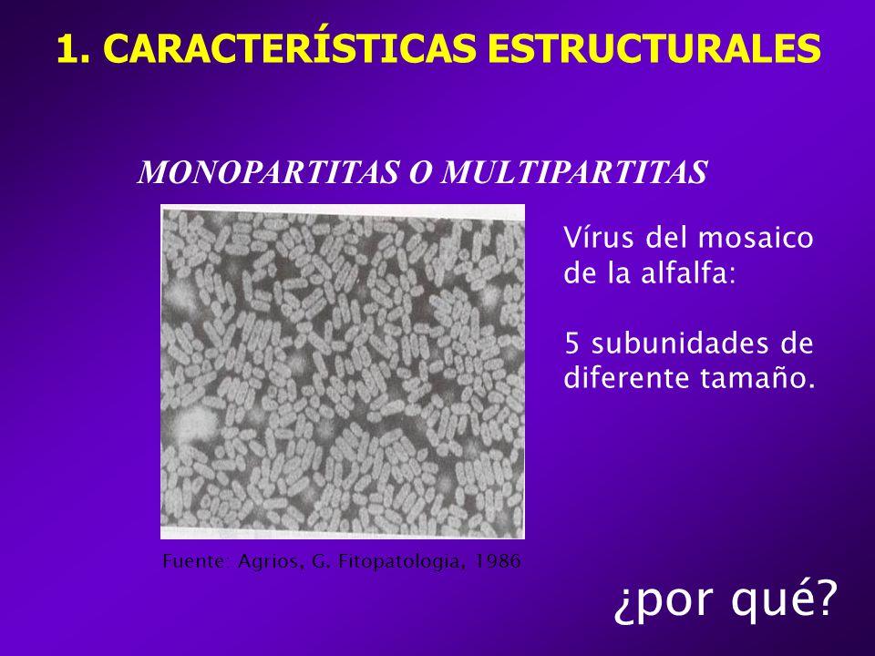 MONOPARTITAS O MULTIPARTITAS ¿por qué.1. CARACTERÍSTICAS ESTRUCTURALES Fuente: Agrios, G.