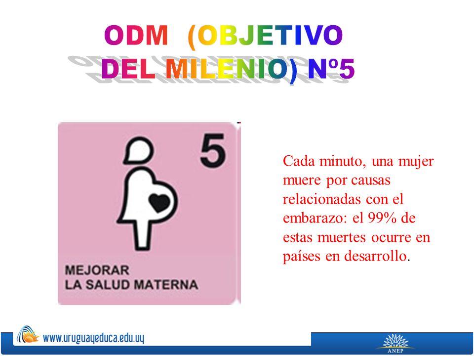 Cada minuto, una mujer muere por causas relacionadas con el embarazo: el 99% de estas muertes ocurre en países en desarrollo.