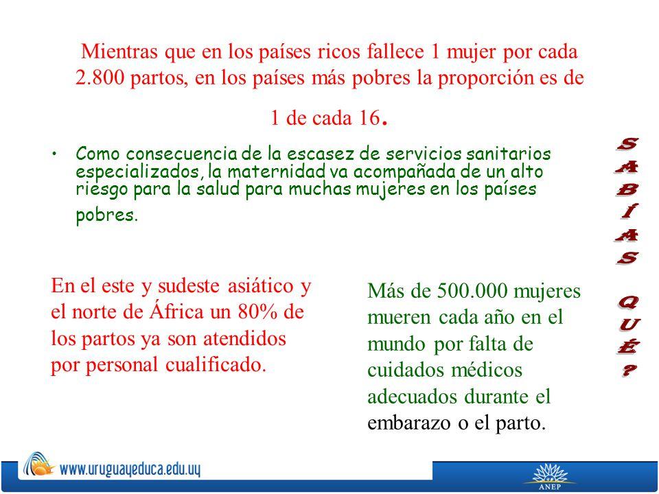Mientras que en los países ricos fallece 1 mujer por cada 2.800 partos, en los países más pobres la proporción es de 1 de cada 16. Como consecuencia d
