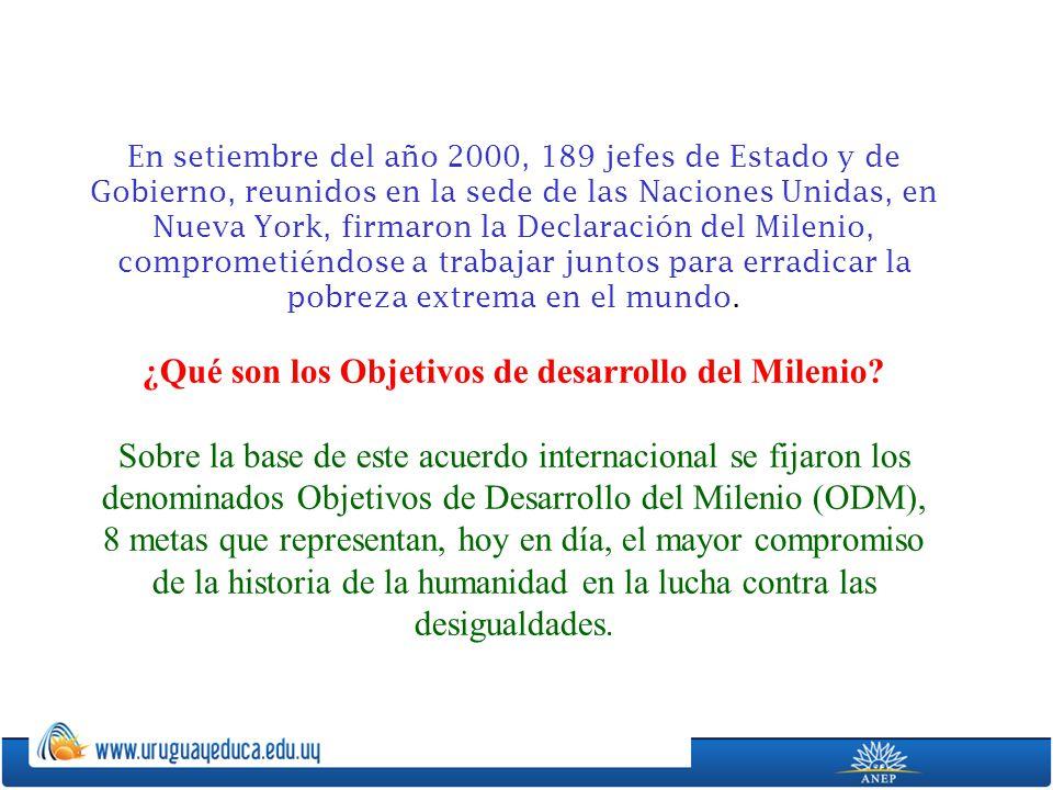 En setiembre del año 2000, 189 jefes de Estado y de Gobierno, reunidos en la sede de las Naciones Unidas, en Nueva York, firmaron la Declaración del M