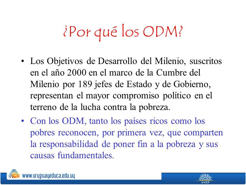 ¿Por qué los ODM? Los Objetivos de Desarrollo del Milenio, suscritos en el año 2000 en el marco de la Cumbre del Milenio por 189 jefes de Estado y de