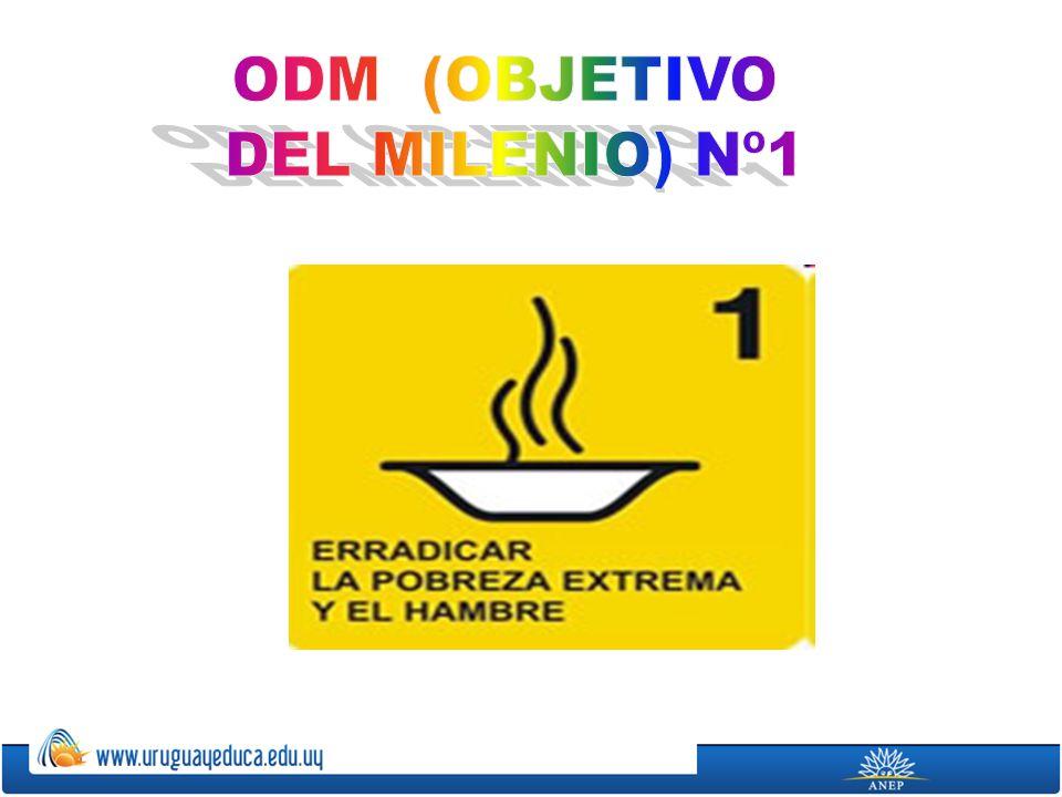 Actualmente, casi 1000 millones de personas, 20 veces la población española, sobreviven con menos de 1 dólar por día.