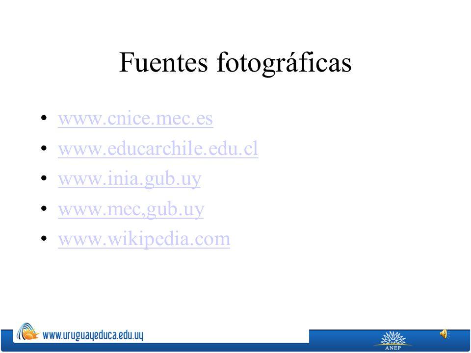 Fuentes fotográficas www.cnice.mec.es www.educarchile.edu.cl www.inia.gub.uy www.mec,gub.uy www.wikipedia.com