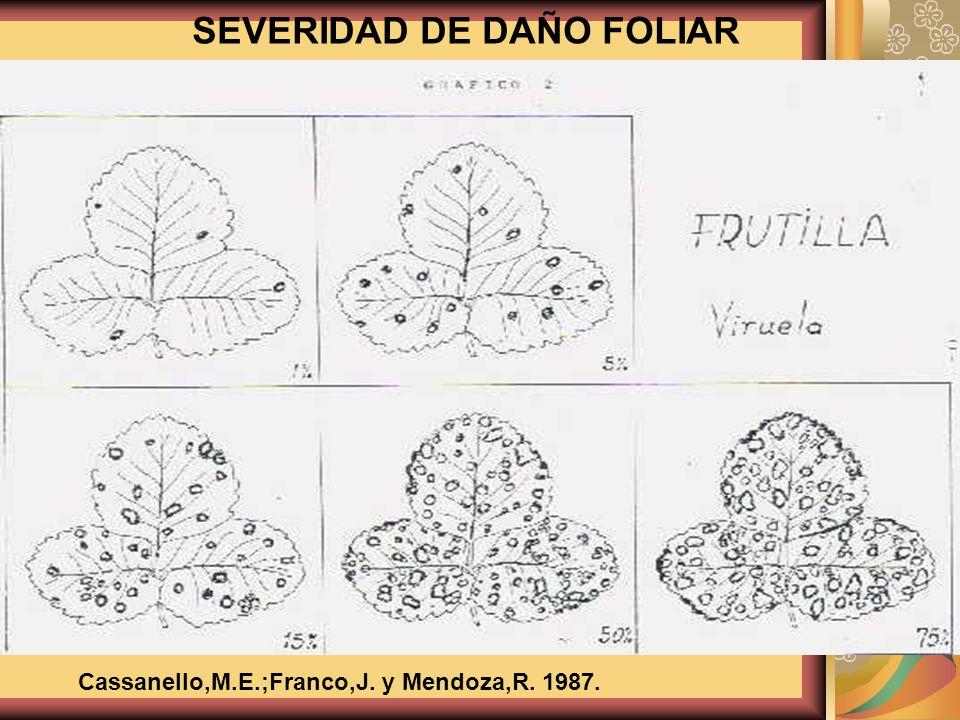 SEVERIDAD DE DAÑO FOLIAR Cassanello,M.E.;Franco,J. y Mendoza,R. 1987.