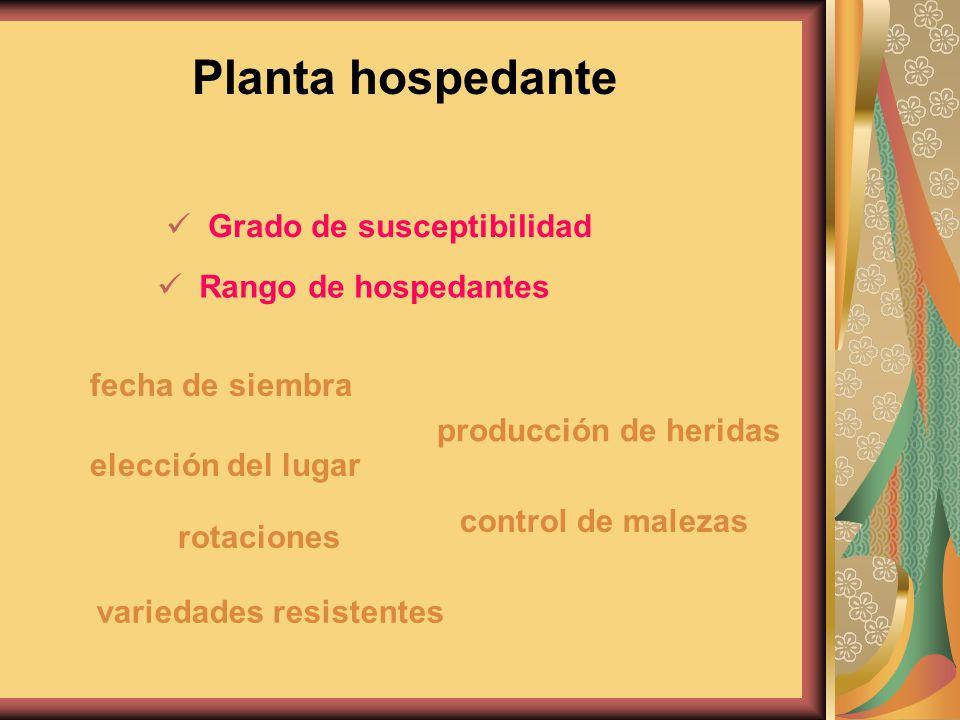 Grado de susceptibilidad fecha de siembra elección del lugar producción de heridas Rango de hospedantes rotaciones control de malezas variedades resis