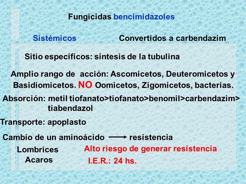 Fungicidas bencimidazoles Sitio específicos: síntesis de la tubulina Amplio rango de acción: Ascomicetos, Deuteromicetos y Basidiomicetos. NO Oomiceto