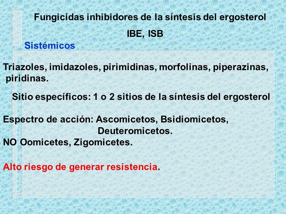 Fungicidas inhibidores de la síntesis del ergosterol IBE, ISB Triazoles, imidazoles, pirimidinas, morfolinas, piperazinas, piridinas. Sitio específico
