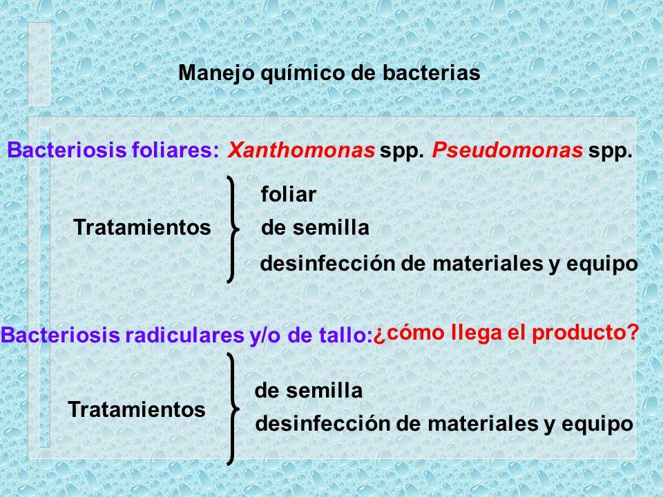 Manejo químico de bacterias Bacteriosis foliares:Xanthomonas spp. Pseudomonas spp. Tratamientos foliar de semilla desinfección de materiales y equipo
