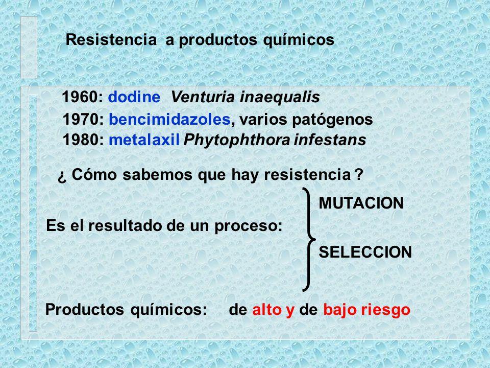 Resistencia a productos químicos 1960: dodine Venturia inaequalis 1970: bencimidazoles, varios patógenos 1980: metalaxil Phytophthora infestans ¿ Cómo