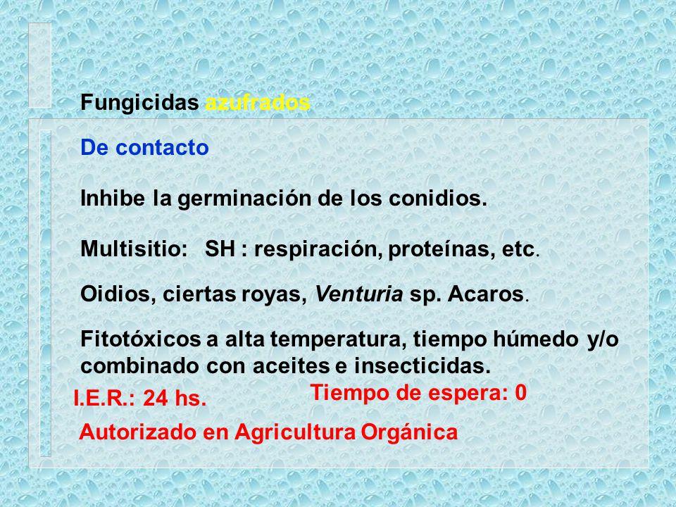 Fungicidas azufrados De contacto Multisitio: SH : respiración, proteínas, etc. Oidios, ciertas royas, Venturia sp. Acaros. Fitotóxicos a alta temperat